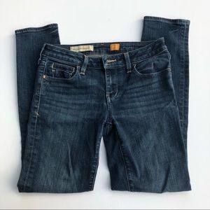 Anthropology Pilcro Jeans | Size 26 |